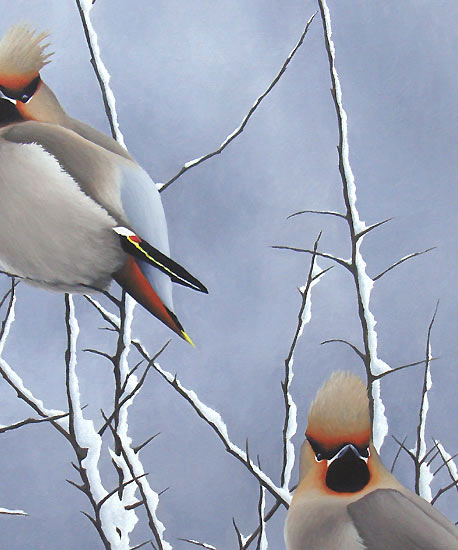 Autumn snowy Bird Art - An Original Oil Painting By Bird Artist Chris Lodge